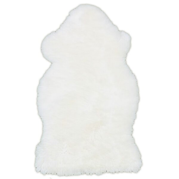 100% Sheepskin Ivory Area Rug by Rodeo